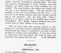 1931 Mag P10