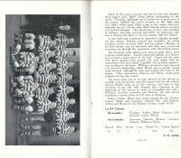 Page 12-13